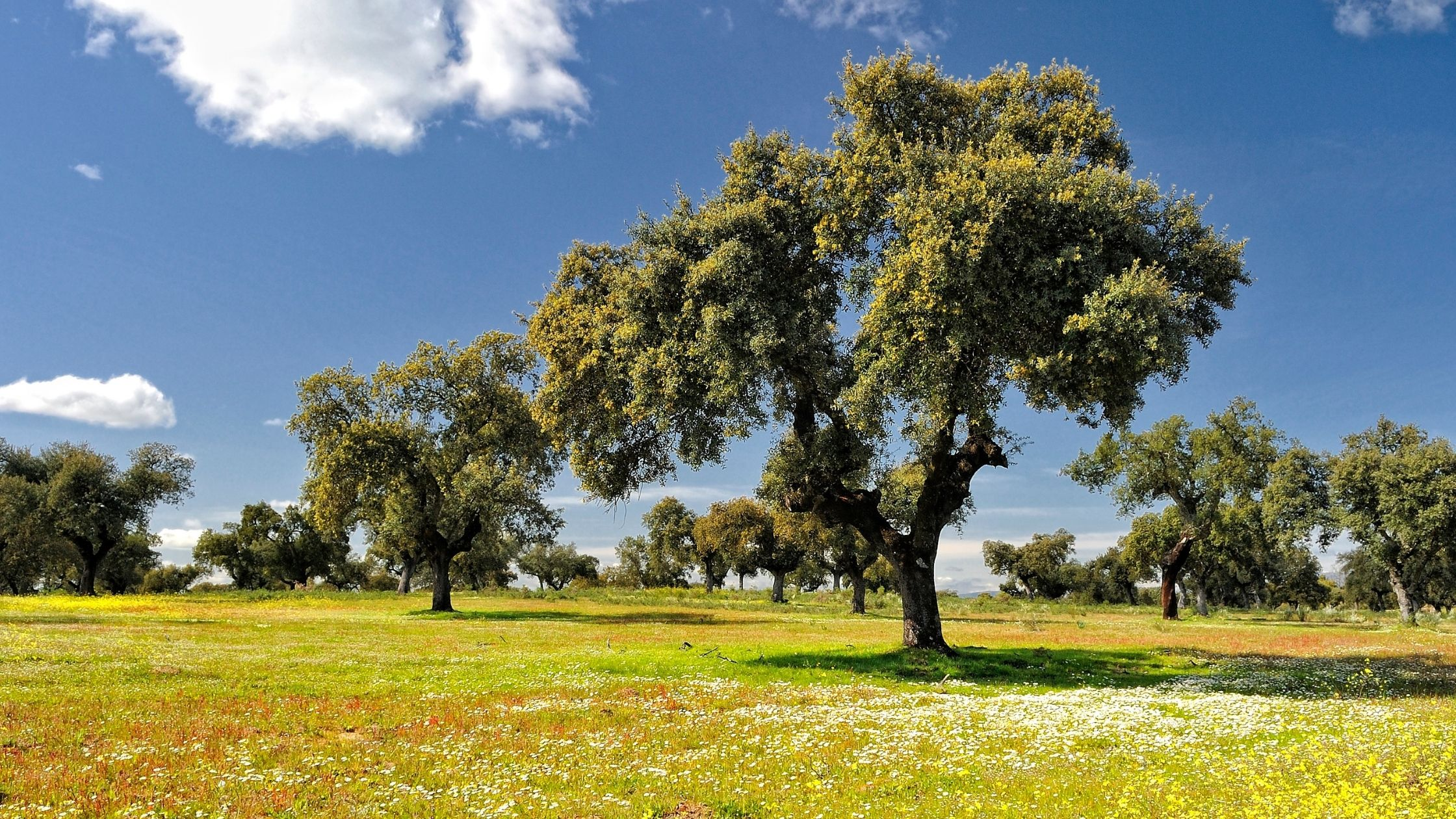 Turismo en Extremadura